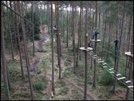 Go Ape! Alice Holt Forest