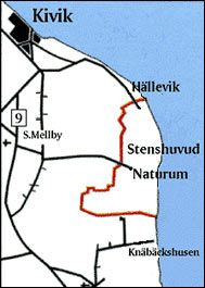 Stenshuvud Nationalpark